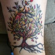 cover arbre cicatrisé
