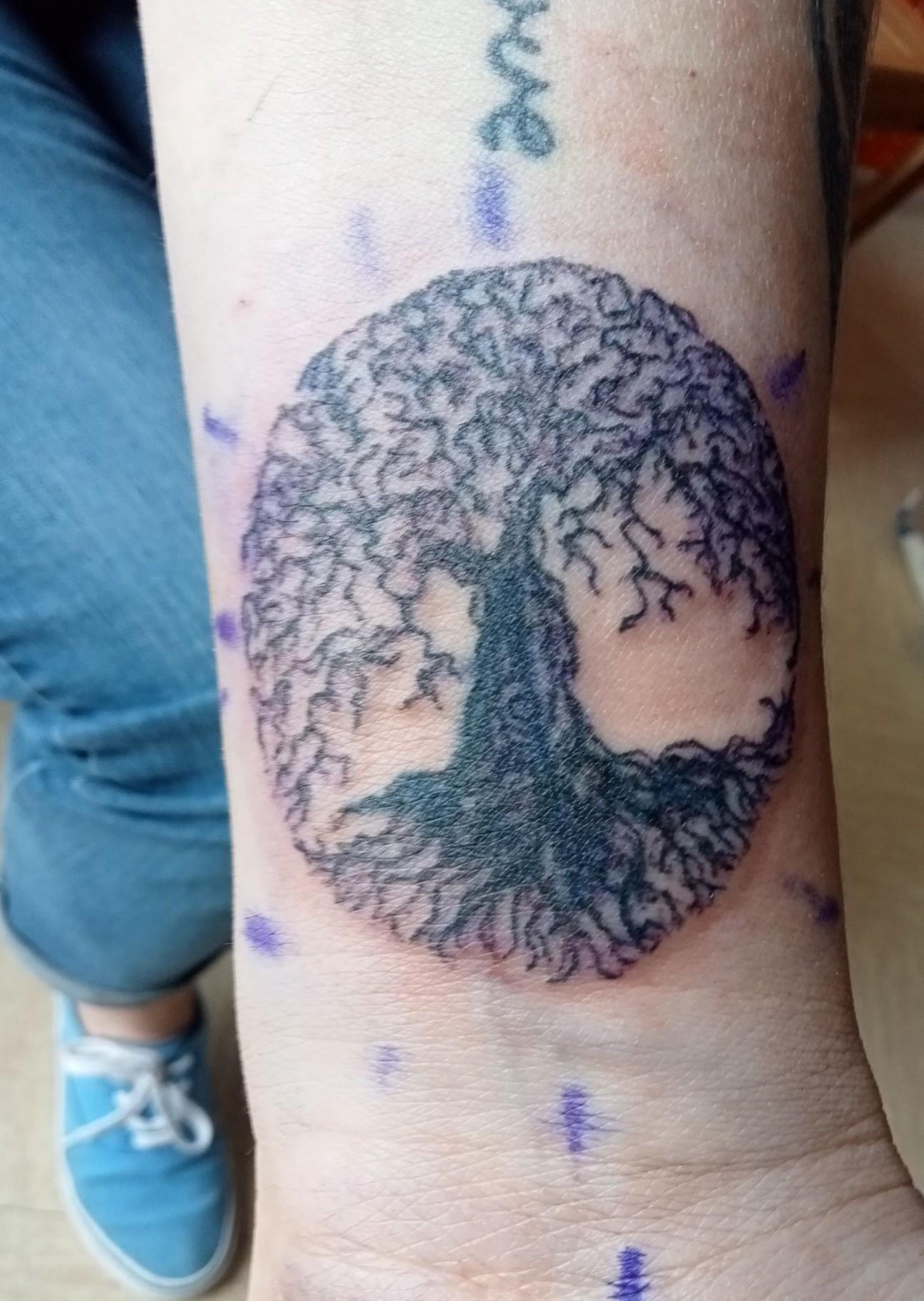 cover arbre de vie 2